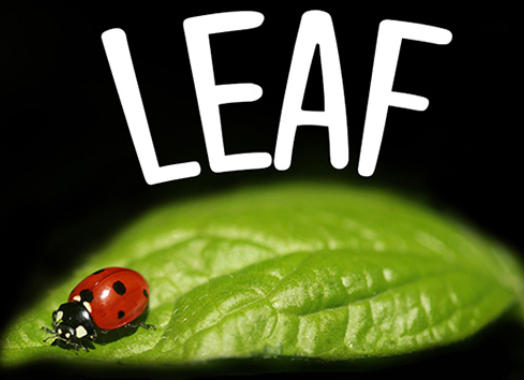 Projects LEAF
